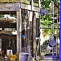 The Chicken Coop by Image Takers Photography LLC - Carol Haddon