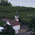 The Church At Maryhill - An Aerial View by Charles Robinson