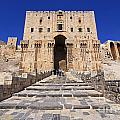 The Citadel In Aleppo Syria by Robert Preston