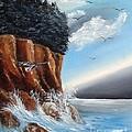 The Cliffs by Liz Pritchett