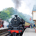 The Climb Into Goathland Station by Tess Baxter