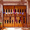 The Clothes Door by Lydia Holly