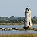 The Cockspur Island Light And Marshes by Bradford Martin