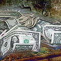 The Color Of The Money by Gunter Nezhoda