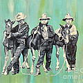 The Colt Whisperers by Patty Stern