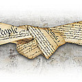 The Constitution by Chris Van Es