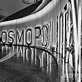 The Cosmopolitan Hotel Las Vegas By Diana Sainz by Diana Raquel Sainz