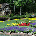 The Cottage And The Garden By The Pond by Sabrina L Ryan