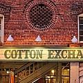 The Cotton Exchange by Cynthia Guinn