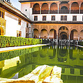 The Court Of The Myrtles And Comares Tower In Alhambra by Dragomir Nikolov