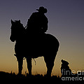 The Cowboy And His Dog by Carol Walker