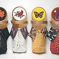 Four Seasons Cradleboards by Douglas K Limon