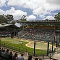 The Crocoseum At The Australia Zoo by Jason O Watson