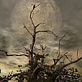 The Crow Tree by Abbie Shores
