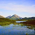 The Cuillin Hills Of Skye In The Western Isles by Alex Cassels