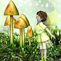 The Curious Fairy by Jayne Wilson