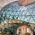 The Dali Museum St Petersburg by Mal Bray