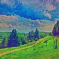 The Dark Hills by Michelle Greene Wheeler