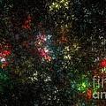 The Dark Side Of Monet by Peter R Nicholls