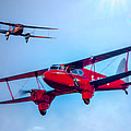 The De Havilland Dh90 Dragonfly by Chris Lord