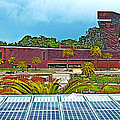 The De Young Fine Arts Museum From Roof Of California Academy Of Sciences In Golden Gate Park-ca by Ruth Hager