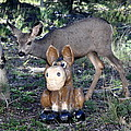 The Deer And The Donkey by Pam Garcia