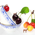 The Deers Among Cherries And Blue-and-white China Miniature Art by Paul Ge