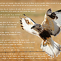 The Desiderata With Hawk by Greg Norrell