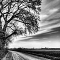 The Dirt Road In Black And White by JC Findley
