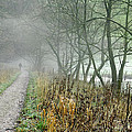 The Disappearing Man - Wolfscote Dale by Rod Johnson