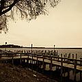 The Docks On Lake Minnetonka by Susan Stone