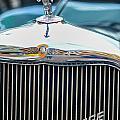 The Dodge by Amanda Sinco