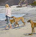 The Dog Walker by Jane  Cozart