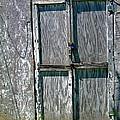 The Door by Rhonda Barrett