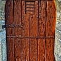 The Door - Vintage Art By Sharon Cummings by Sharon Cummings