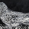 The Dove - Oil Portrait by Fabrizio Cassetta