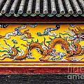 The Dragon by Roberta Bragan