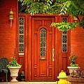 The Dream Door by Rodney Lee Williams