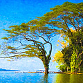 The Dream Tree - Lake Nicaragua Landscape by Mark E Tisdale