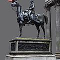 The Duke Of Wellington Goma  Grey by John Farnan