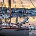 The Eastwind In Boothbay Harbor by Susan Cole Kelly