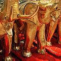The Elephant Shrine by Shaun Higson