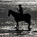The Equestrian-silhouette by Douglas Barnard