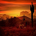 The Essence Of The Southwest by Saija  Lehtonen
