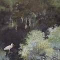 The Everglades by Wanda Dansereau