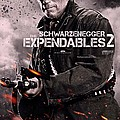 The Expendables 2 Schwarzenegger by Movie Poster Prints