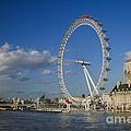 The Eye In London by Patricia Hofmeester