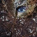 The Eye by Joana Kruse