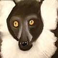 The Face Of A Lemur by Renee Michelle Wenker