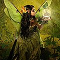 The Fairy Of Clairvoyant by Babette Van den Berg